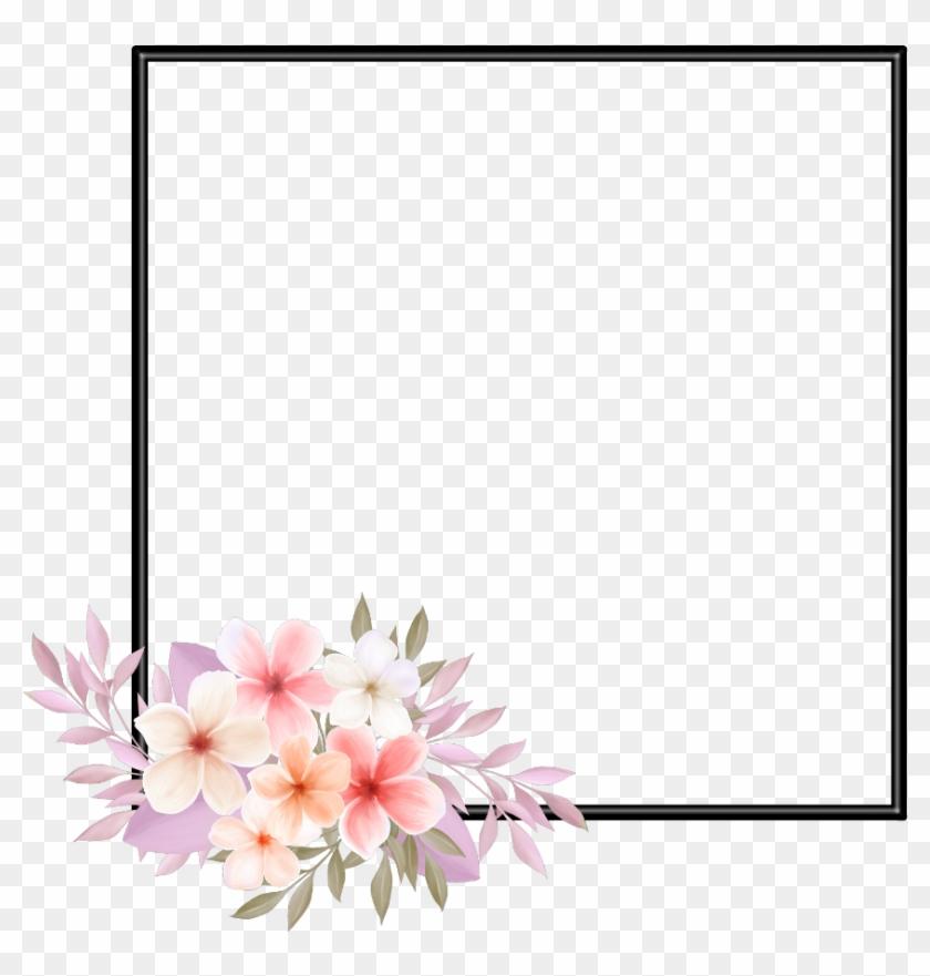 Plumeria frangipani tropical flower, ... | Stock vector | Colourbox