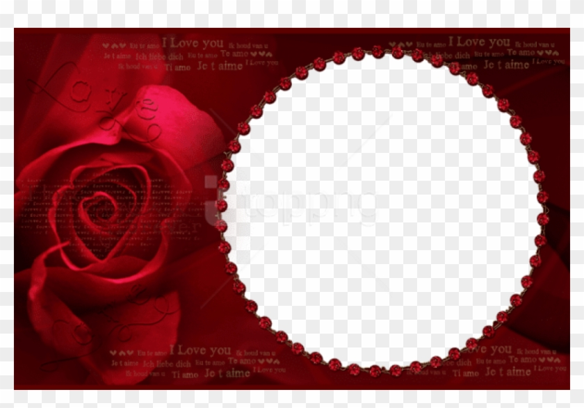 Free Png Best Stock Photos Transparent Red Rose Frame Rose Photo