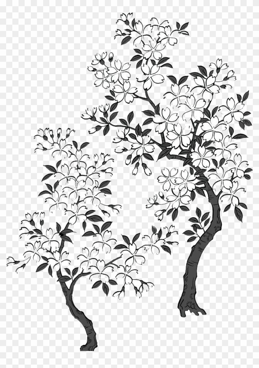 2362 X 2363 7 - Cherry Blossom Tree Black And White Transparent Clipart #572569