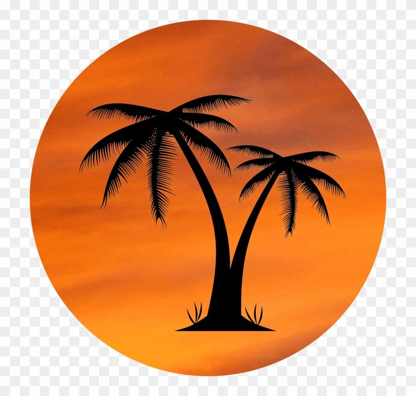 Orange Sky Palm Tree Design - Palm Tree Pic No Background Clipart #574098