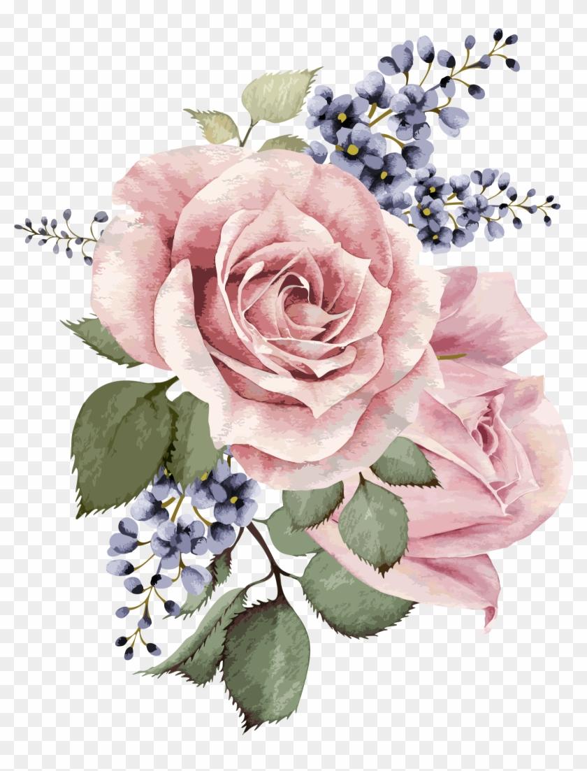 Botanical Illustration, Illustration Art, Gouache, - Transparent Background Watercolor Flowers Clipart #576966