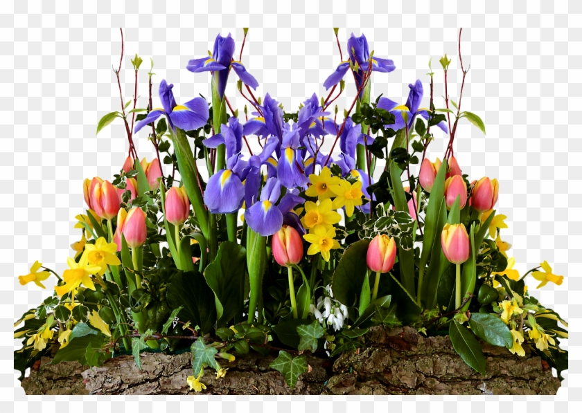 Spring Flowers Transparent Png Clipart #5761309