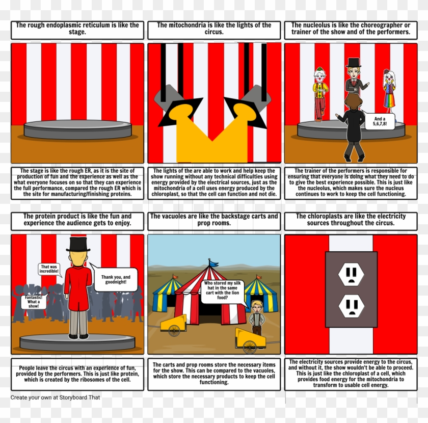 The Plant Cell Is Like A Circus - Cell Is Like A Circus Clipart #5764754