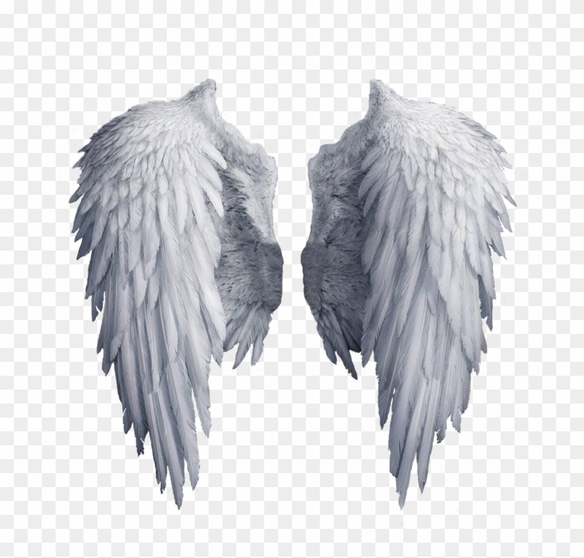 Angel Wings Png, White Angel Wings, Angel Aesthetic, - White Angel Wings Transparent Background Clipart #5838446