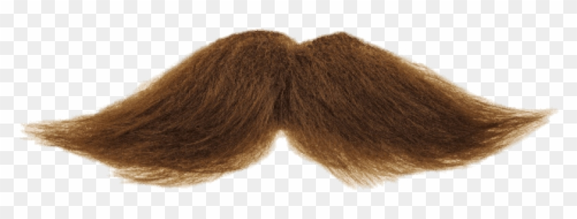 Free Png Download Mustache Brown Png Images Background - Moustache Transparent Background Clipart #598931