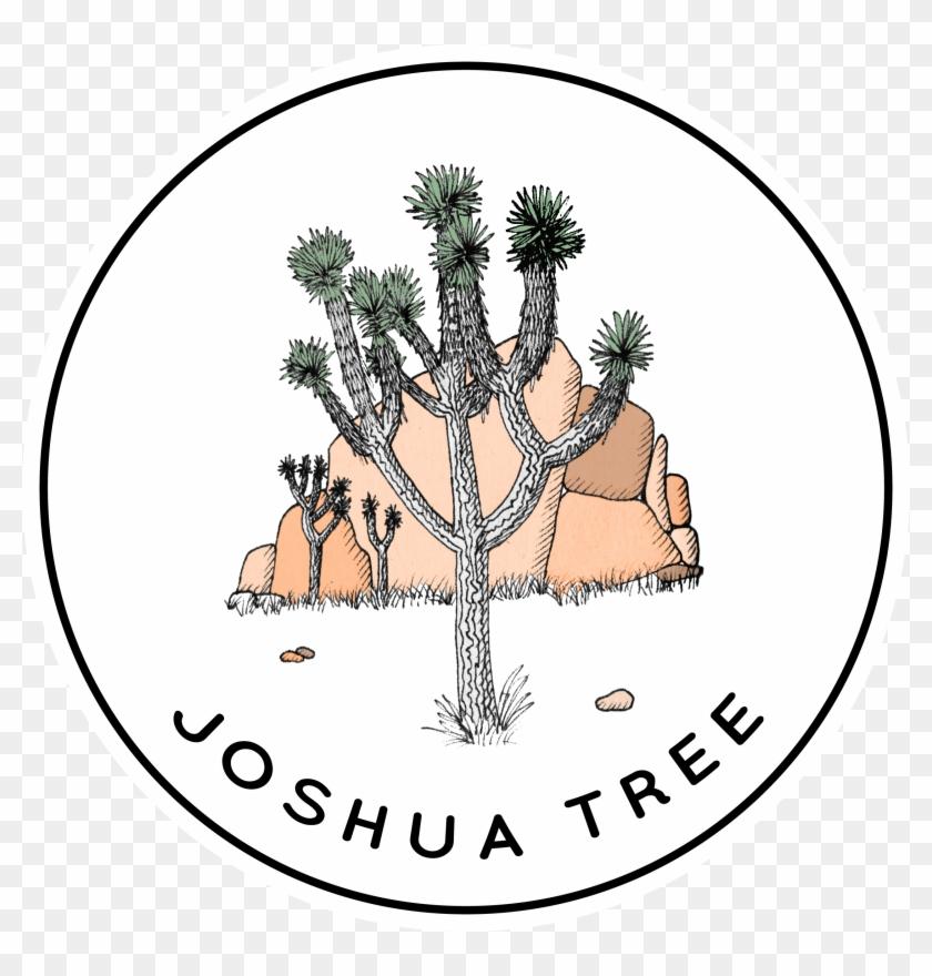 Joshua Tree National Park, Joshua Tree, Drawing, Tree, - Joshua Tree Line Drawing Clipart #5910202
