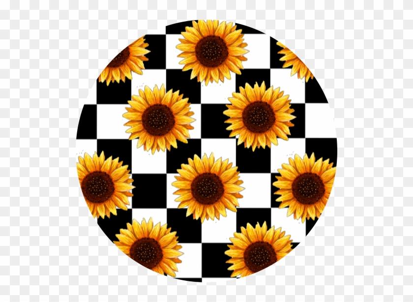 #scacchi #sunflower #tumblr #aesthetic #aesthetictumblr ...