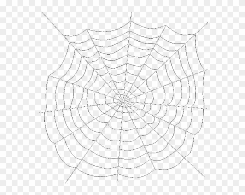 Spiders Web Transparent Png Image Spider Web Png Transparent Background Clipart 61718 Pikpng