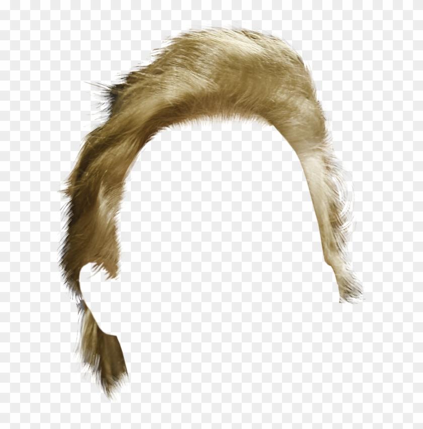 Transparent Donald Trump Hair Clipart #65444