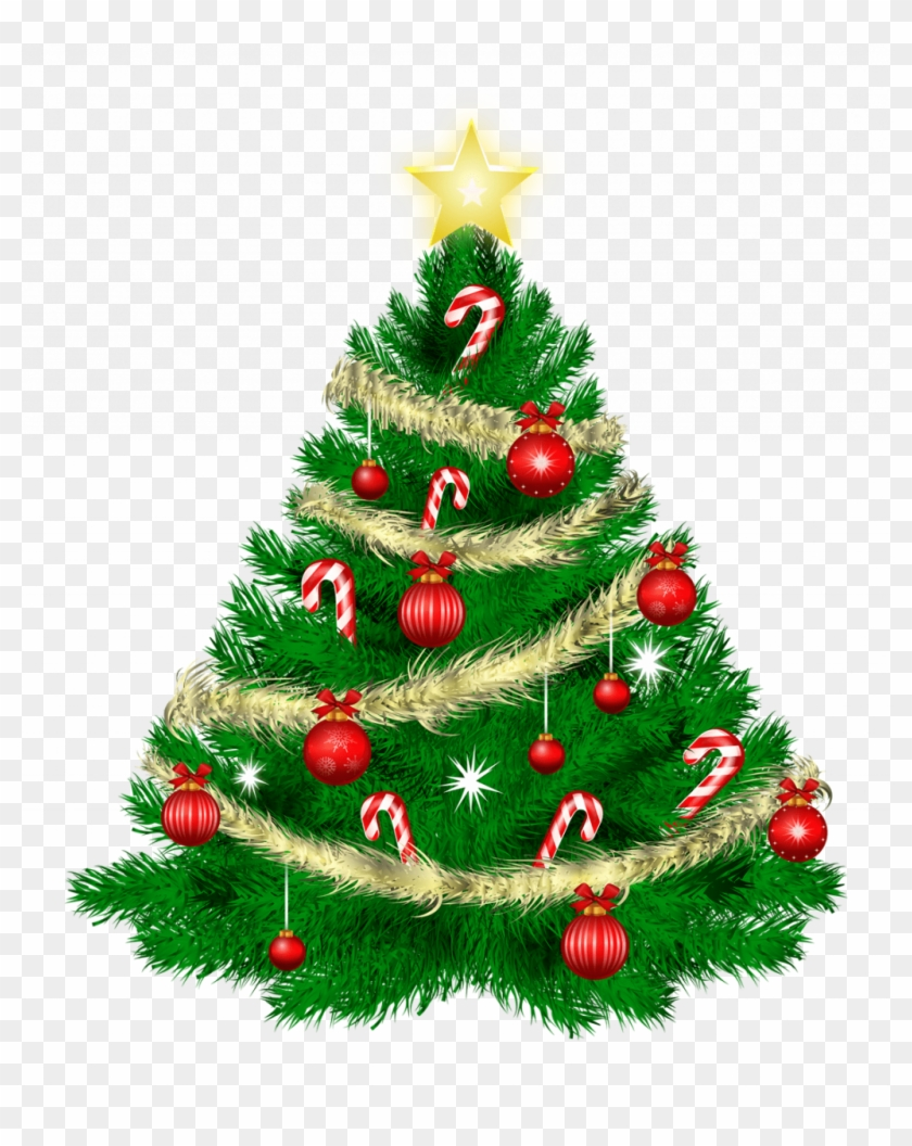 Astonishing Cartoon Pictures Of Christmas Trees Picture - Merry Christmas Tree Png Clipart #600277