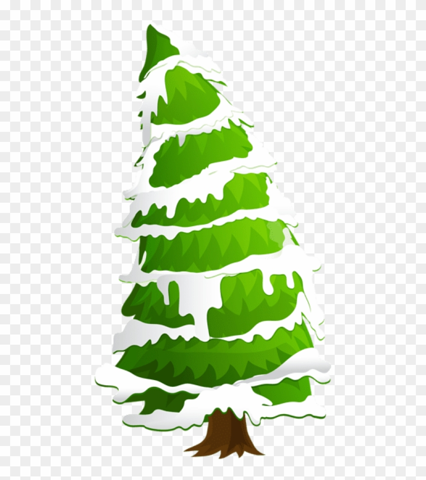 Christmas Holly Clipart Transparent.Free Png Pine Tree With Snow Png Images Transparent