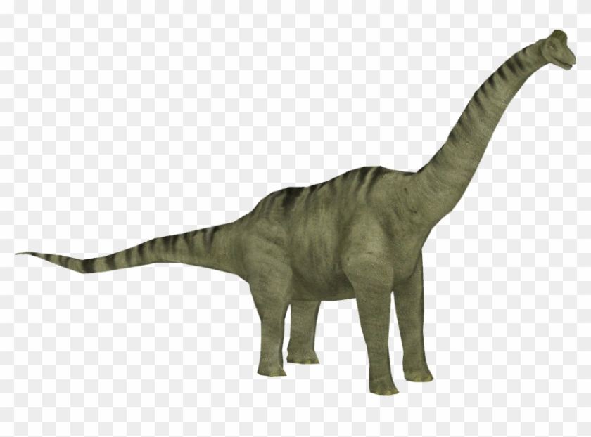 Brachiosaurus Png Clipart - Jurassic Park Operation Genesis Png Transparent Png #634100