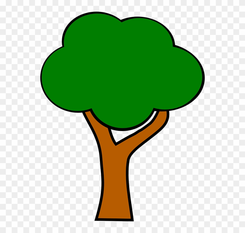 Apple Tree Without Apples - Apple Tree Clipart - Png Download #635018