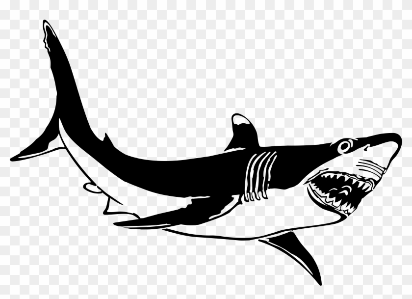 The Great White Shark - Great White Shark Clip Art - Png Download #686888