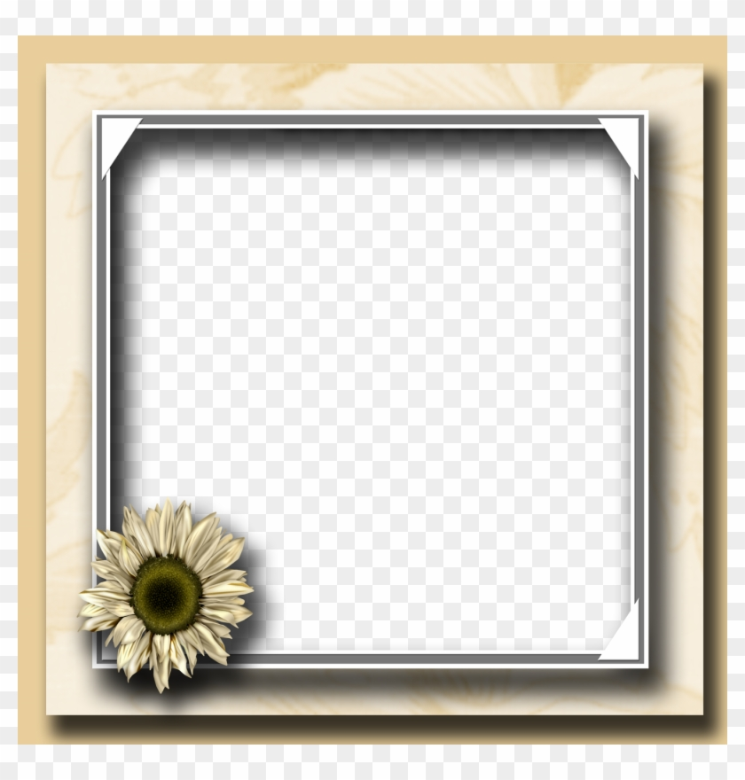 Flower Photo Frame Png - Flower Photo Frame, Transparent Png #79406