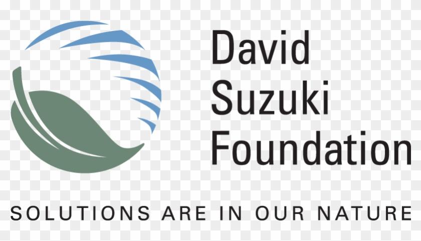 Federal Changes Needed To Meet First Nations Drinking - David Suzuki Foundation Logo Clipart #734789