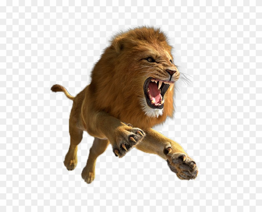 African Lion Png Image - Transparent Lion Png Hd, Png Download #754531
