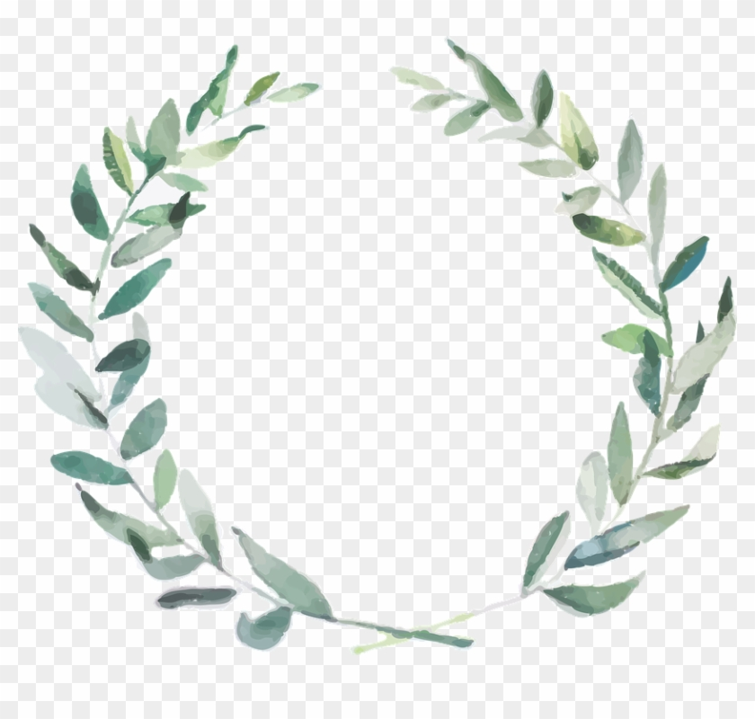 Olive Branches Png - Watercolor Olive Branch Transparent Background Clipart #788829