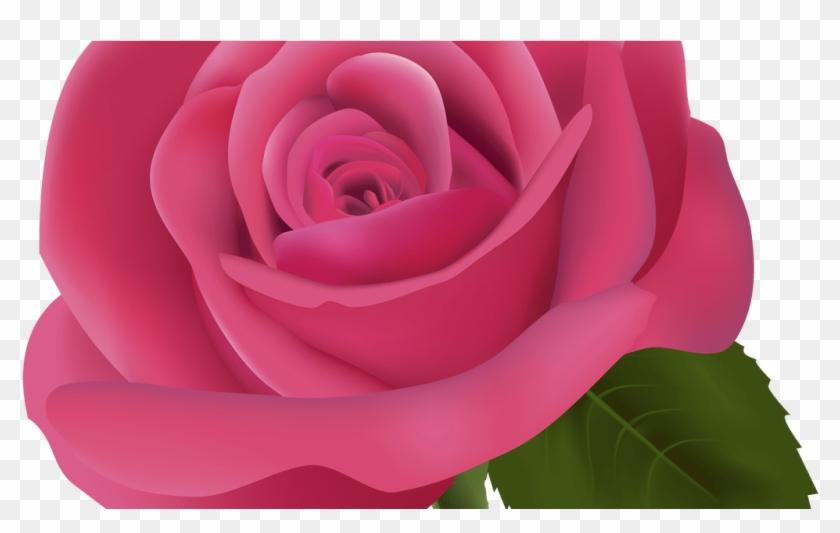 Pink Rose Png Clipart Image Best Web Clipart Bunga Mawar Gambar