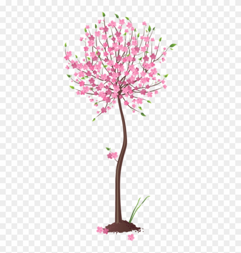 Free Png Download Spring Pink Tree Png Images Background - Spring Trees Flowers Transparent Background Clipart #87756