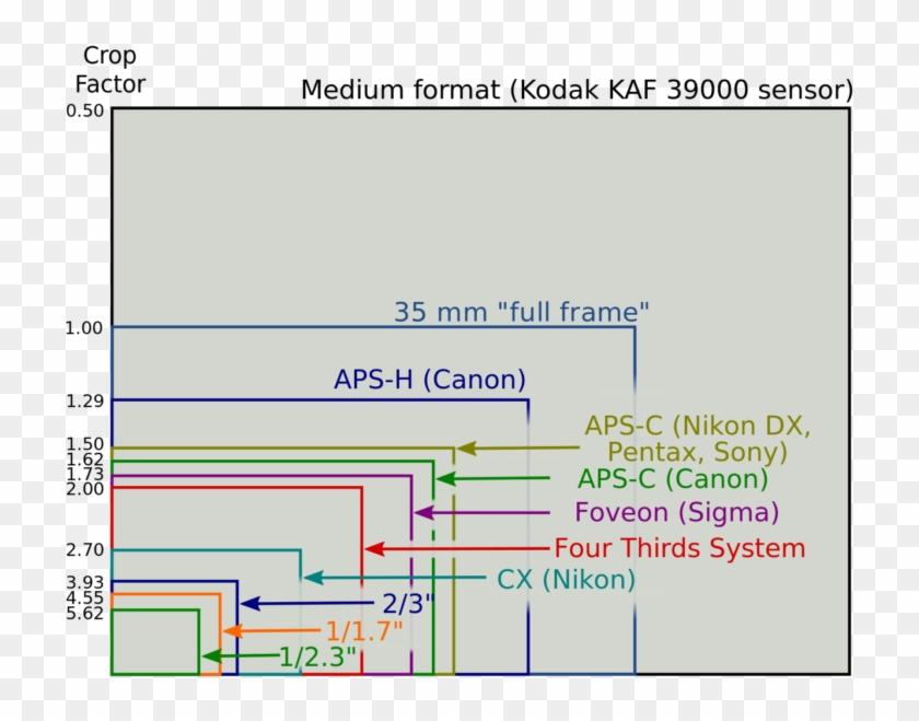 Canon, Nikon,sony, Pentax, Panasonic Sensor Size Comparison - Apc Vs Full Frame Clipart #813008