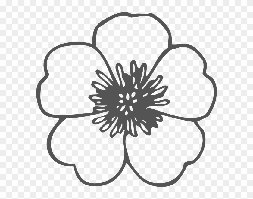 Small Drawing Simple Poppy Flower Clipart 814857 Pikpng