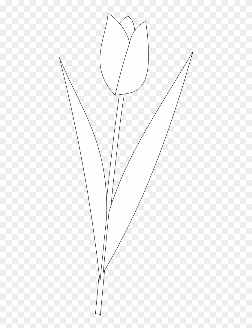Tulip Tattoos Black And White Clipart Flower Png Download 886367 Pikpng