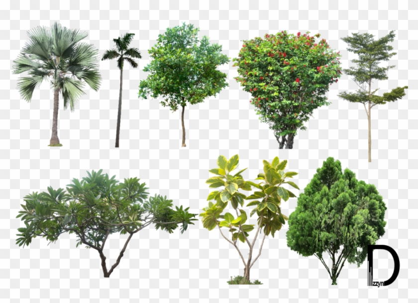 Landscape Png Photos - Trees For Photoshop High Resolution Clipart #93349