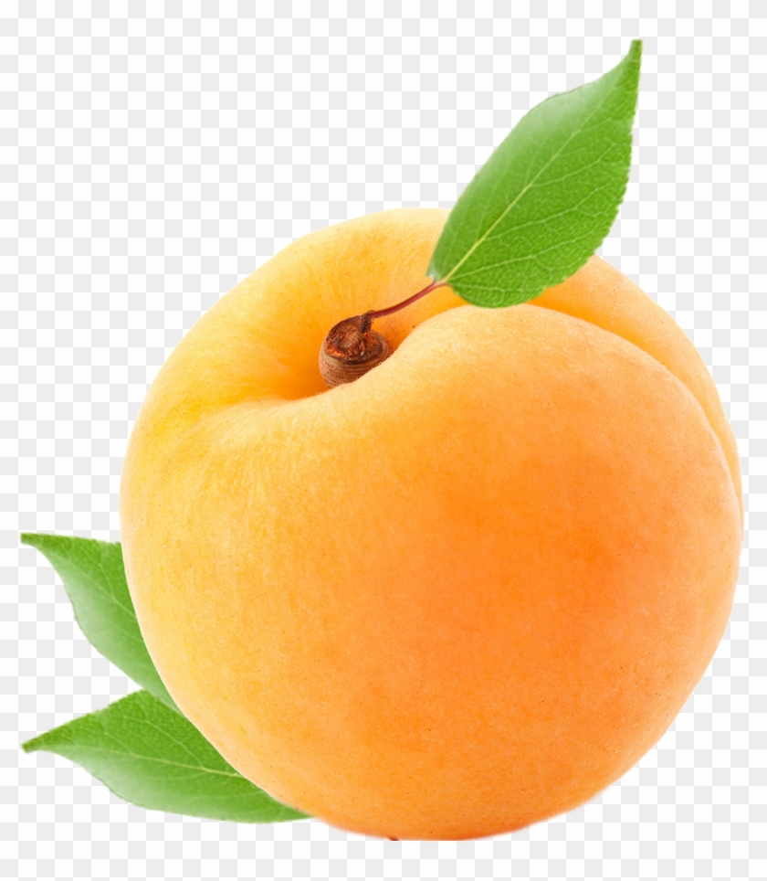 Apricot Clipart #924763