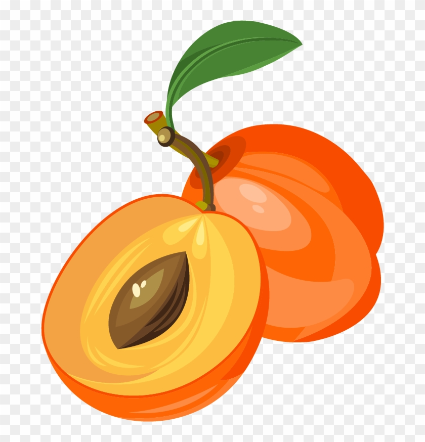 Peach Clipart Apricot - Clipart Apricot - Png Download #925448