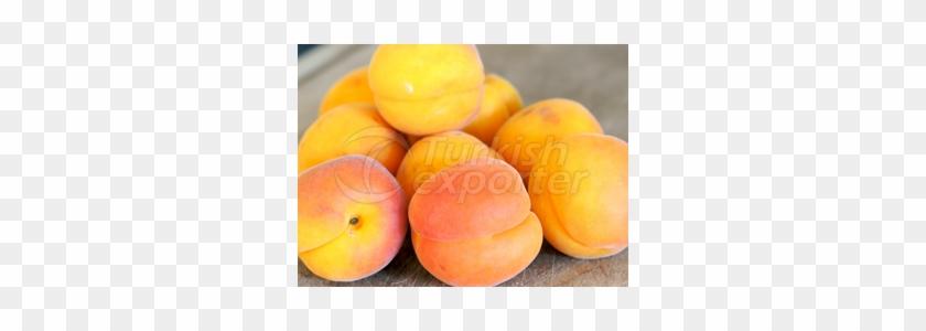 Apricot Clipart #925511