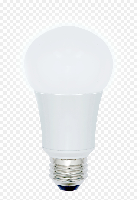 Hazdours Location Lighting - Incandescent Light Bulb Clipart #948352