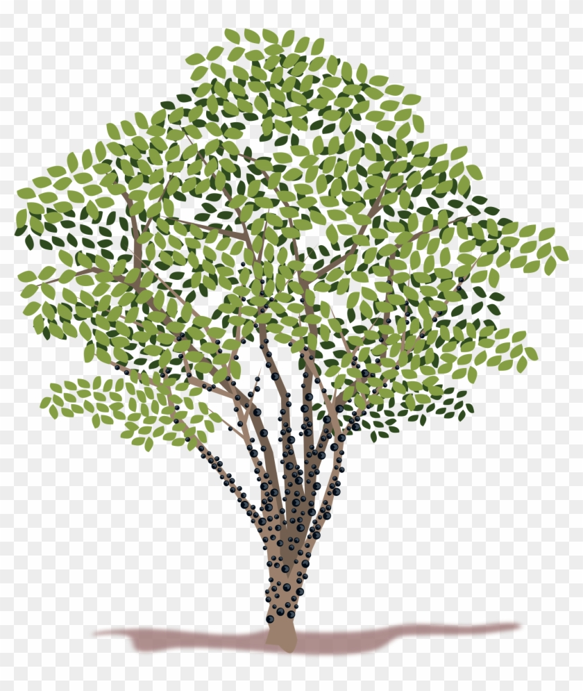 Spring Tree Vector Clipart - Png Download #977249
